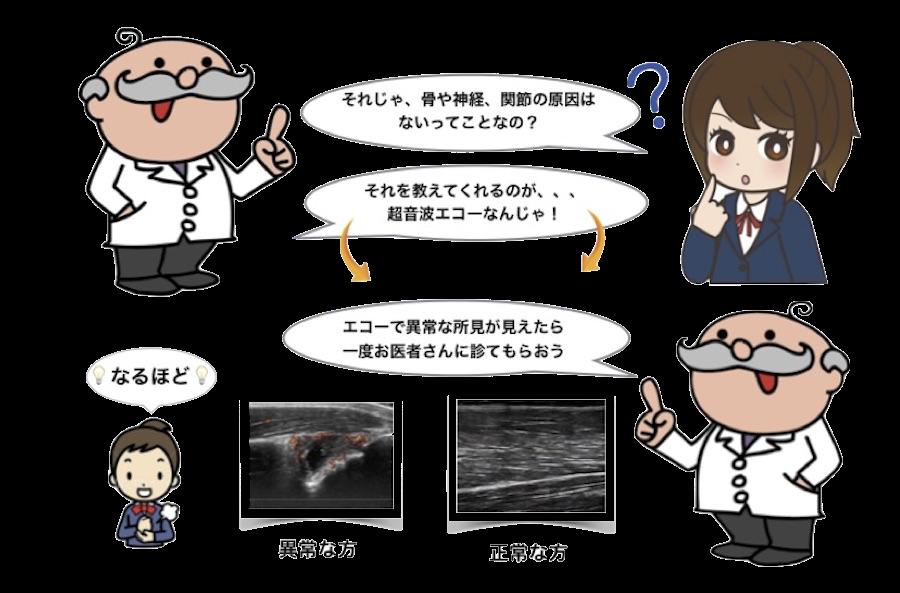 超音波エコー写真